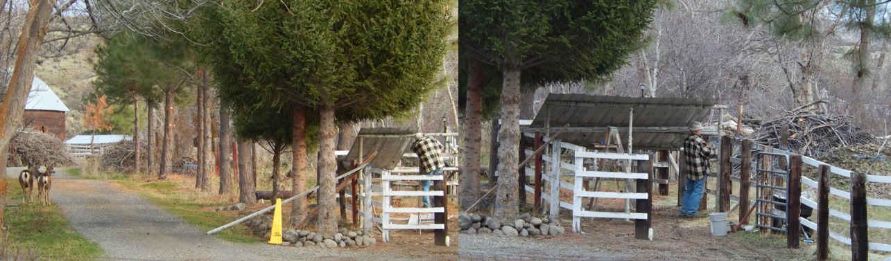 7-collage-deerstartinprogresshayshed